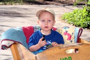 Kind hat Spaß im Bollerwagen